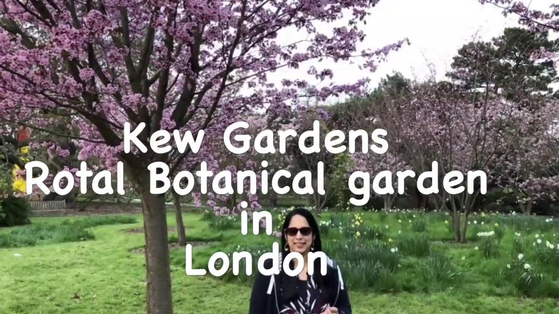 London Botanical Gardens  Kew Garden VLOG Tamil