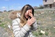Ankara'da Katliam Devam Ediyor! 7 Köpek Zehirli Sosislerle Telef Edildi