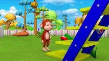 Les animaux Drôle de Voiture de Fruits Curseur de Jeux pour les Enfants les Animaux les Vidéos - Animaux du Zoo de Compilation | Peony Noakes