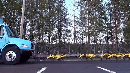 LPHD 2434 - Les robots-tracteurs