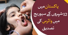 Polio virus detected from sewage in 12 cities of Pakistan