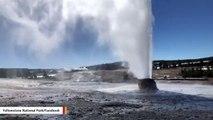 Yellowstone National Park: Beehive Geyser Eruption Caught On Camera