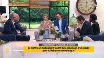 """Fou rire sur le plateau de """"La quotidienne"""" sur France 5 après une question très étrange... Regardez"""
