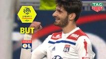But Martin TERRIER (39ème) / Olympique Lyonnais - Angers SCO - (2-1) - (OL-SCO) / 2018-19