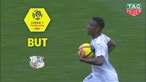 But Cheick TIMITE (77ème) / FC Nantes - Amiens SC - (3-2) - (FCN-ASC) / 2018-19