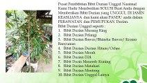 BERKUALITAS .! HP/WA : 0822-2022-8118,  Jual Bibit Durian Musang King di Batang, Jual Bibit Durian Bawor di Blora