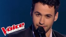 Paul McCartney – Live and Let Die | Anthony Touma | The Voice France 2013 | Prime 3