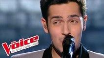 Stevie Wonder – Free | Yoann Fréget | The Voice France 2013 | Prime 4