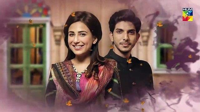 Mujhay Tum Pasand Ho E 4 Promo Choti Choti Batain HUM TV Drama - 21st April 2019