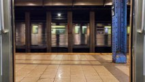 Aspiring Actress Reportedly Dragged To Death By Manhattan Train