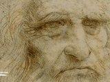 Science grand format - Léonard de Vinci, accélérateur de science