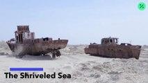 El mar marchito (Versión sin texto)