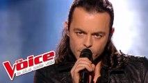 Jean-Jacques Goldman – Il suffira d'un signe | Nuno Resende | The Voice France 2013 | Finale