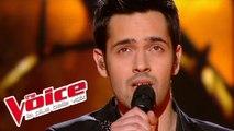Michael Jackson – Earth Song | Yoann Fréget | The Voice France 2013 | Finale