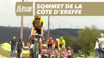 Côte d'Ereffe - La Flèche Wallonne 2019