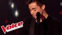 Avicii – Wake Me Up | Alejandro Reyes | The Voice France 2014 | Blind Audition