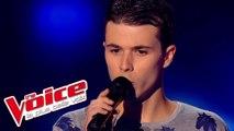 Michel Sardou – Les Lacs du Connemara   Ayrton Paris   The Voice France 2014   Blind Audition