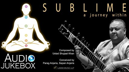 Sublime   A Journey Within   Ud. Shujaat Khan   Sapan Anjaria