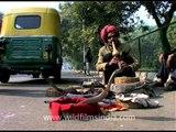 Snake charmer performance in Delhi