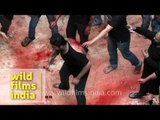 Blood flows like water on Ashura at the Imambara