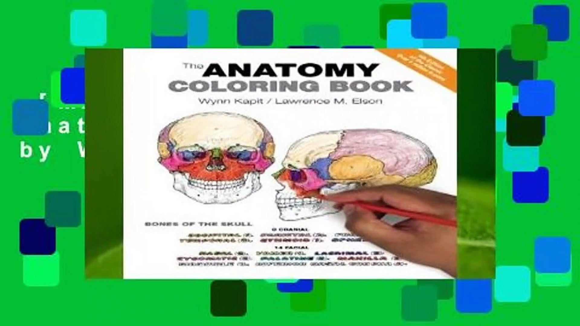 [MOST WISHED] The Anatomy Coloring Book by Wynn Kapit