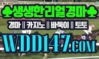 홍콩경마 WDD 1 4 7점CoM ミ한국경마
