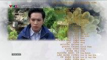 Hoa Cúc Vàng Trong Bão Tập 30 ~ Bản Chuẩn ~ Phim Việt Nam VTV3 ~ Phim Hoa Cuc Vang Trong Bao Tap 31 ~ Phim Hoa Cuc Vang Trong Bao Tap 30
