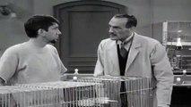 The Many Loves of Dobie Gillis Season 4 Episode 12 Dr. Jekyll and Mr. Gillis