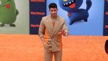 "Nick Jonas ""UglyDolls"" Los Angeles Premiere Orange Carpet"
