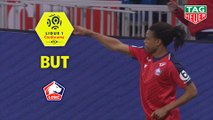 But Loïc REMY (51ème) / LOSC - Nîmes Olympique - (5-0) - (LOSC-NIMES) / 2018-19