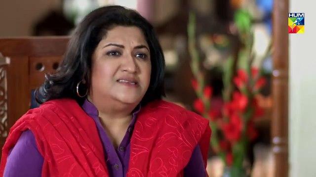 Mujhay Tum Pasand Ho Last Episode 4 - Choti Choti Batain HUM TV Drama - 28th April 2019