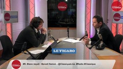 """""""Nous ne croyons plus à la coalition entre les libéraux et les sociaux-démocrates car elles ont conduit à un affaissement de l'Europe"""" Benoit Hamon (29/04/19)"""