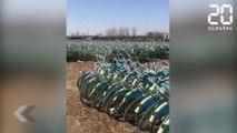 Les vélos envahissent la Chine - Le Rewind du Lundi 29 Avril 2019