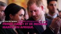 Meghan Markle et le prince Harry bientôt aux États-Unis ? Le frère de la duchesse en est convaincu