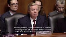 Lindsey Graham Quotes Former FBI Agent Peter Strzok: 'Trump Is A F**king Idiot'