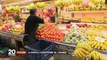 Espagne : l'orange menacée par la surproduction mondiale