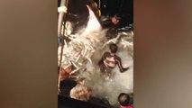 Fisherman Sacrifice Day's Catch To Free Manta Rays