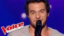 OneRepublic – Counting Stars | Amir Haddad | The Voice France 2014 | Prime 1