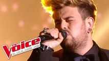 Claude Nougaro – Toulouse | Lioan | The Voice France 2014 | Prime 3