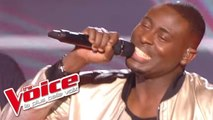 Daft Punk – Get Lucky | Wesley | The Voice France 2014 | Prime 3