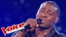 Jean-Jacques Goldman – Puisque tu pars | Wesley | The Voice France 2014 | Quarts de finale