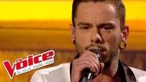 Claude François – Comme d'habitude | Maximilien Philippe | The Voice France 2014 | Finale