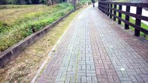 Biking on a path in Taiwan.....