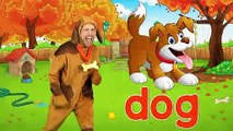 """""""Alphabet Animals"""" - ABC Animals Song for Kids 