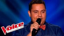 Sam Smith – Stay With Me | Guillaume Etheve | The Voice France 2015 | Blind Audition