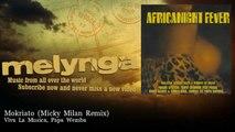 Viva La Musica, Papa Wemba - Mokriato - Micky Milan Remix