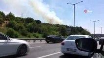 - TEM otoyolu Kavacık mevkiinde ormanlık alanda yangın çıktı. olay yerine çok sayıda itfaiye ekibi sevk edildi.
