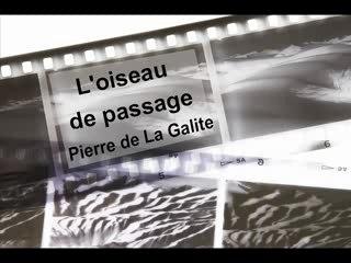 L'oiseau de passage - Pierre de La Galite