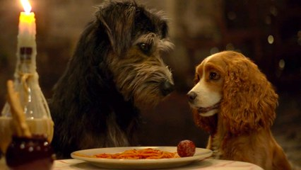 Lady and the Tramp on Disney+ - Official Trailer