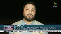Paraguay: Min. del Ambiente evaluará daños de incendios en El Pantanal